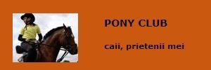 Pony Club Arad