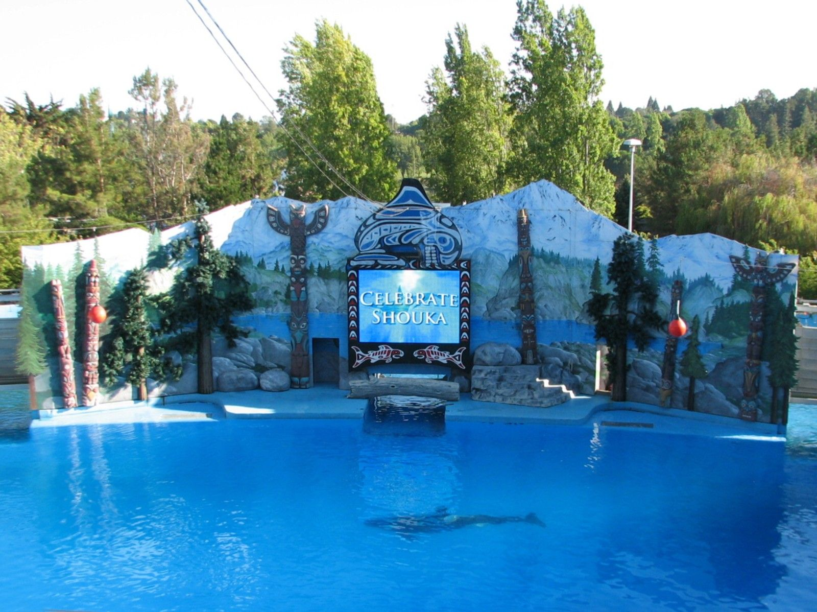 Aquariums and zoos a photo thread page 4 for Pool show discovery