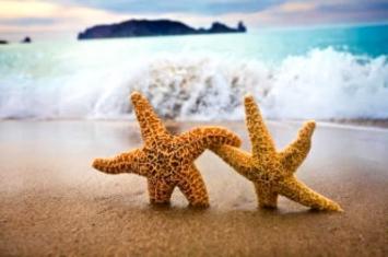 صورة حب اشكال البحر الجميلة