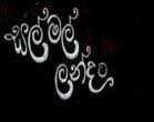Salmal Landata 37 - 17.02.2013