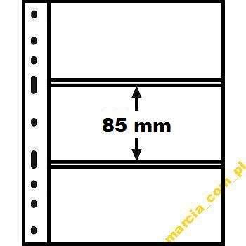 5txr.jpg
