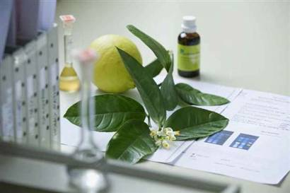 Bitkiler, ilaç şekline getirildiklerinde zararlı hale dönüşür mü