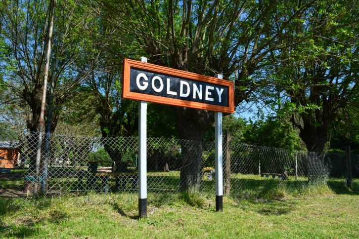 goldney mercedes buenos aires