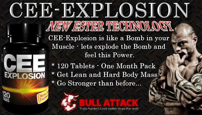 http://imageshack.us/a/img341/6263/ceeexplosionbanner.jpg