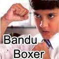 Bandu Boxer Hindi Full Movie - lankatv 07.07.2012 - LankaTv.Net