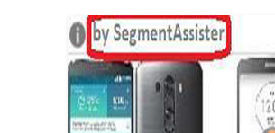 Remove Ads by SegmentAssister
