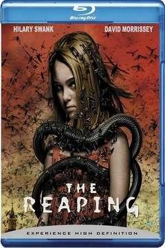 Hasat Zamanı - The Reaping - 2007 BluRay 1080p DuaL MKV indir