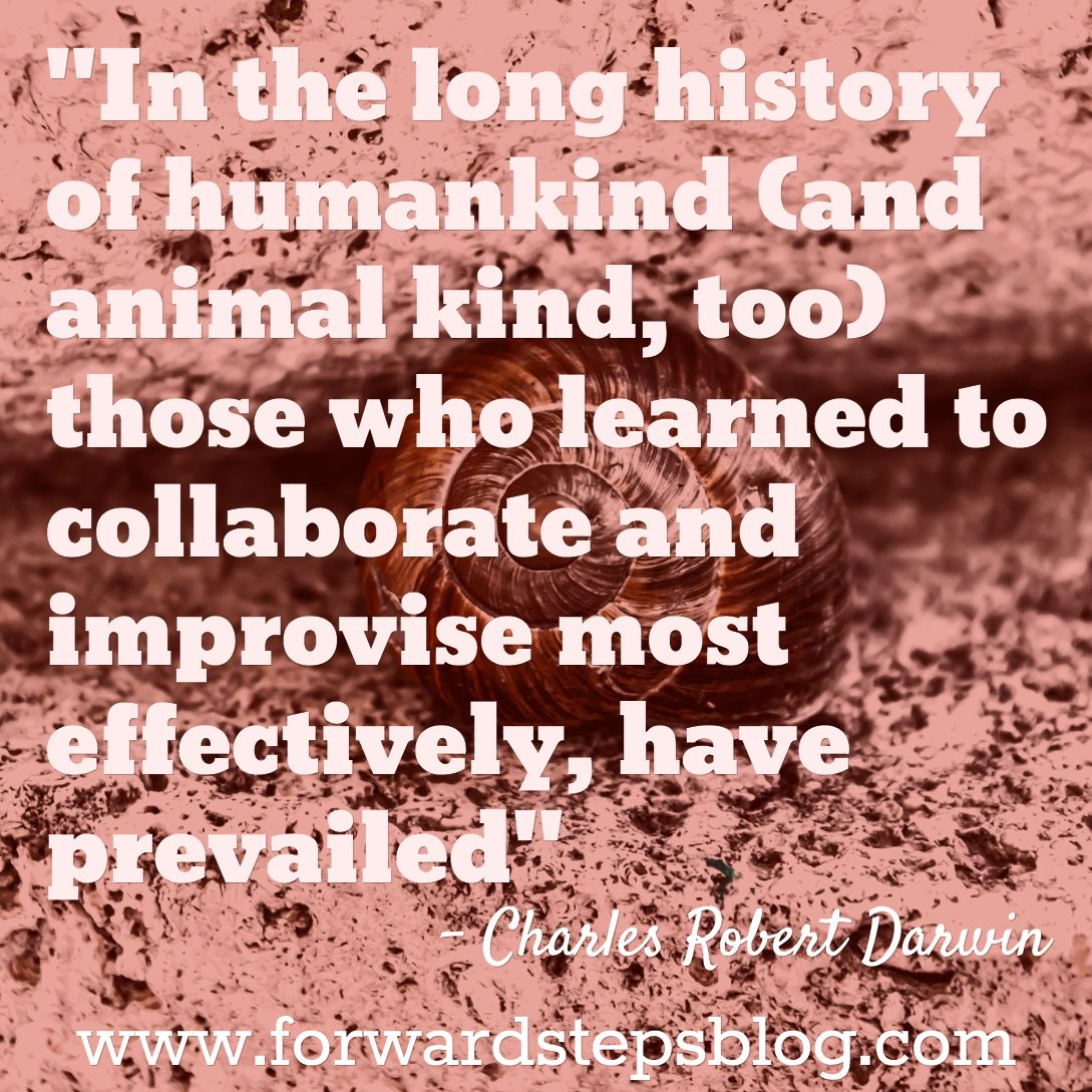 Learn To Embrace Change, Collaborate And Improvise Quote Image