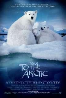 Gấu Bắc Cực 2