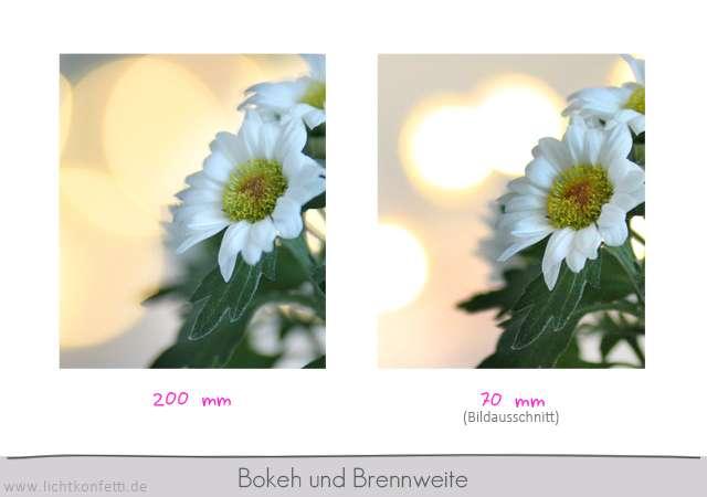 Foto-Kurs - Brennweite und Bokeh - Schärfentiefe
