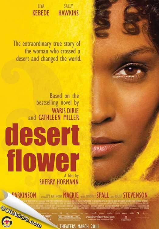 უდაბნოს ყვავილი | Desert Flower