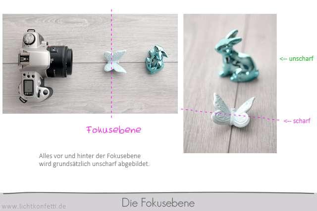 Foto-Kurs - Fokusebene - Schärfeebene