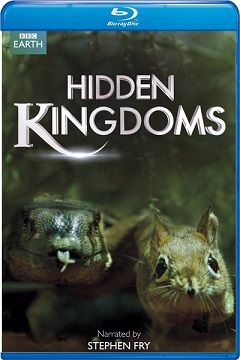 Gizli Krallık - BBC Earth Hidden Kingdoms - 2014 BluRay 1080p DuaL MKV indir