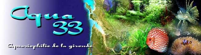 www.aqua33.net/
