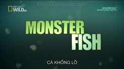 Loạt Phim Về Cá Khổng Lồ - Monster Fish