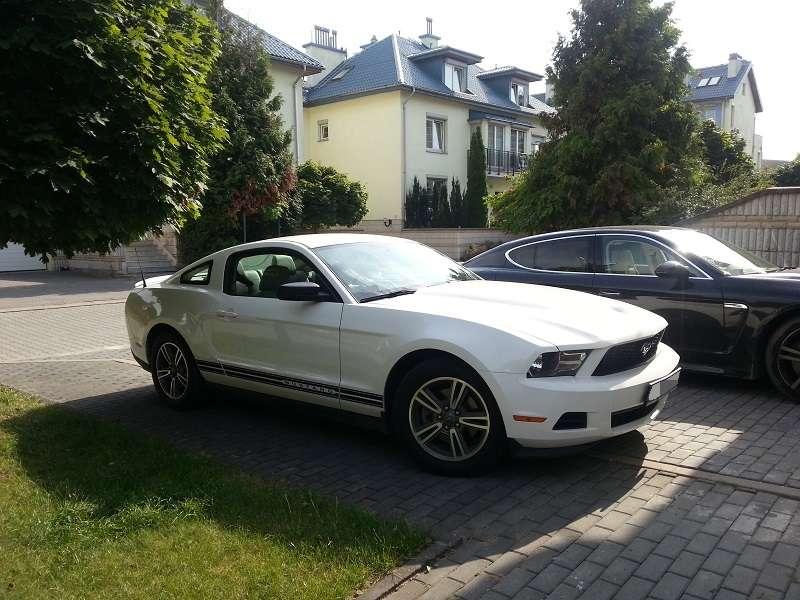 Mustang bok