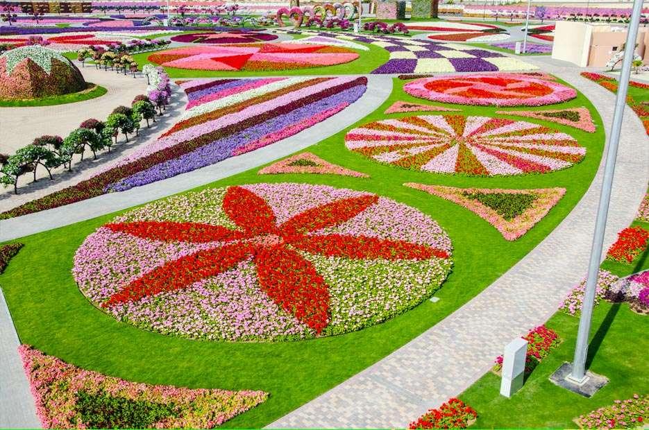 72257458 O maior jardim do Mundo   o jardim de milagre de Dubai
