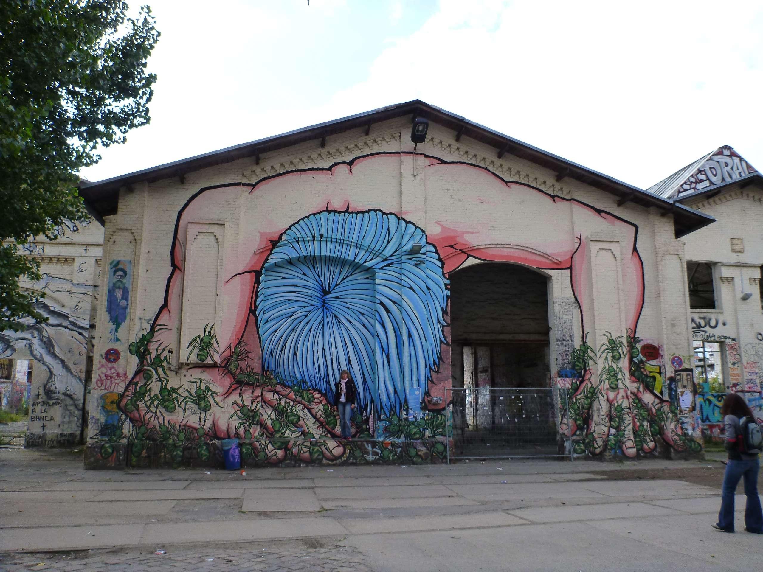 Zakonita i grafit