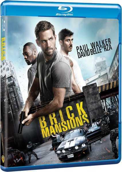 Brick Mson (2014) avi BD Rip AC3 640 Kbps ITA DDN