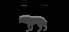 Sanris and Athena