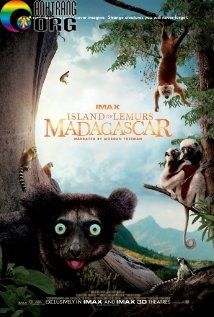 Đảo Vượn Cáo: Madagascar | Island of Lemurs: Madagascar | 2014 ...