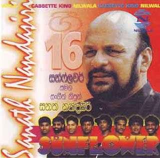Sanath Nandasiri-Sunflower -02 - Lankatv.Net