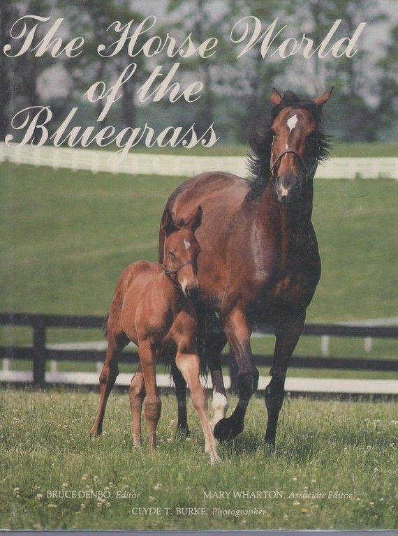 The Horse World of the Bluegrass