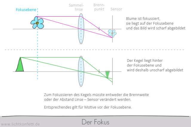Foto-Kurs - Der Fokus - Sammellinse Bild