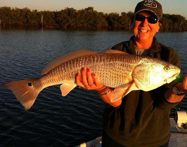 Florida spring2015 daytonabch newsmyrna guide report for Deep sea fishing new smyrna