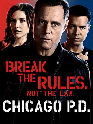 Chicago PD – S02E16 – What Puts You On That Ledge