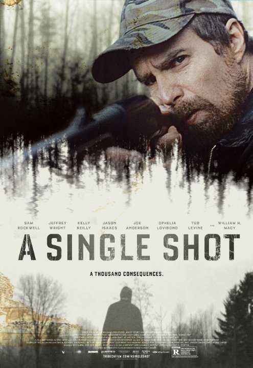A Single Shot (2013) DVD9 Copia 1:1 Ita