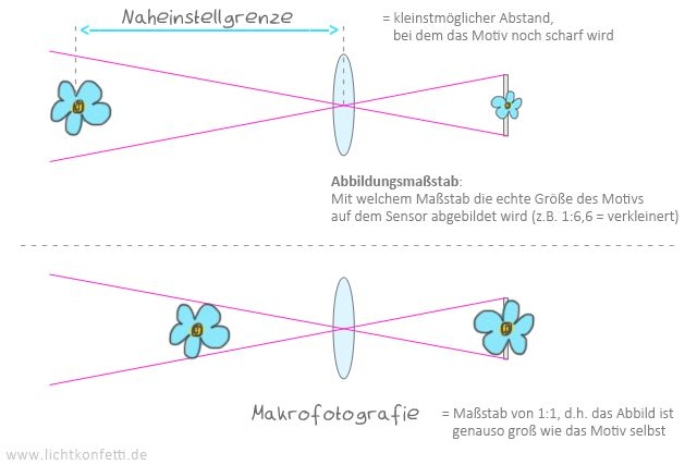 Foto-Kurs - Naheinstellgrenze, Abbildungsmaßstab und Makro