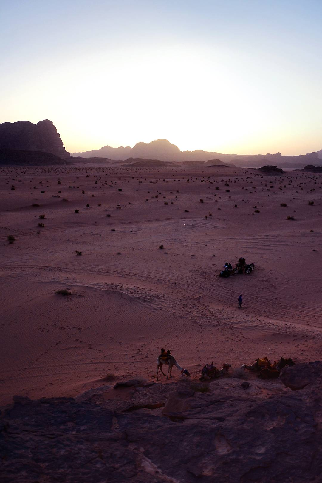 Views of Jordan, Wadi Rum, deser sunset, jordan camel ride - justlikesushi.com