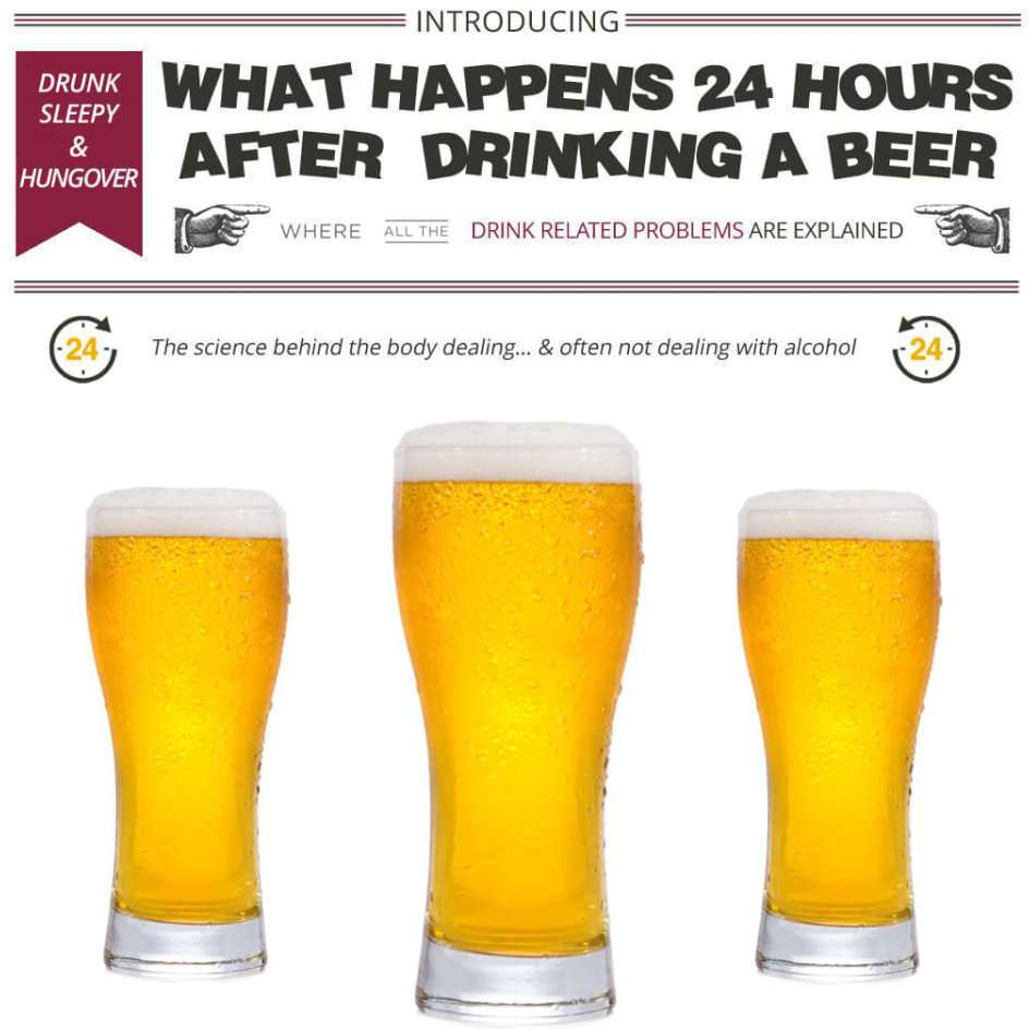 WHAT HAPPENS 24 HOURS AFTER DRINKING A BEER