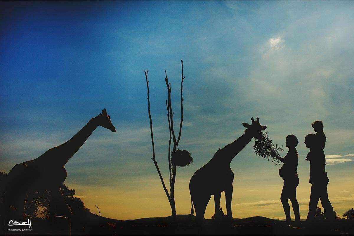 fotografos en puebla, fotos de familias en Africam Safari