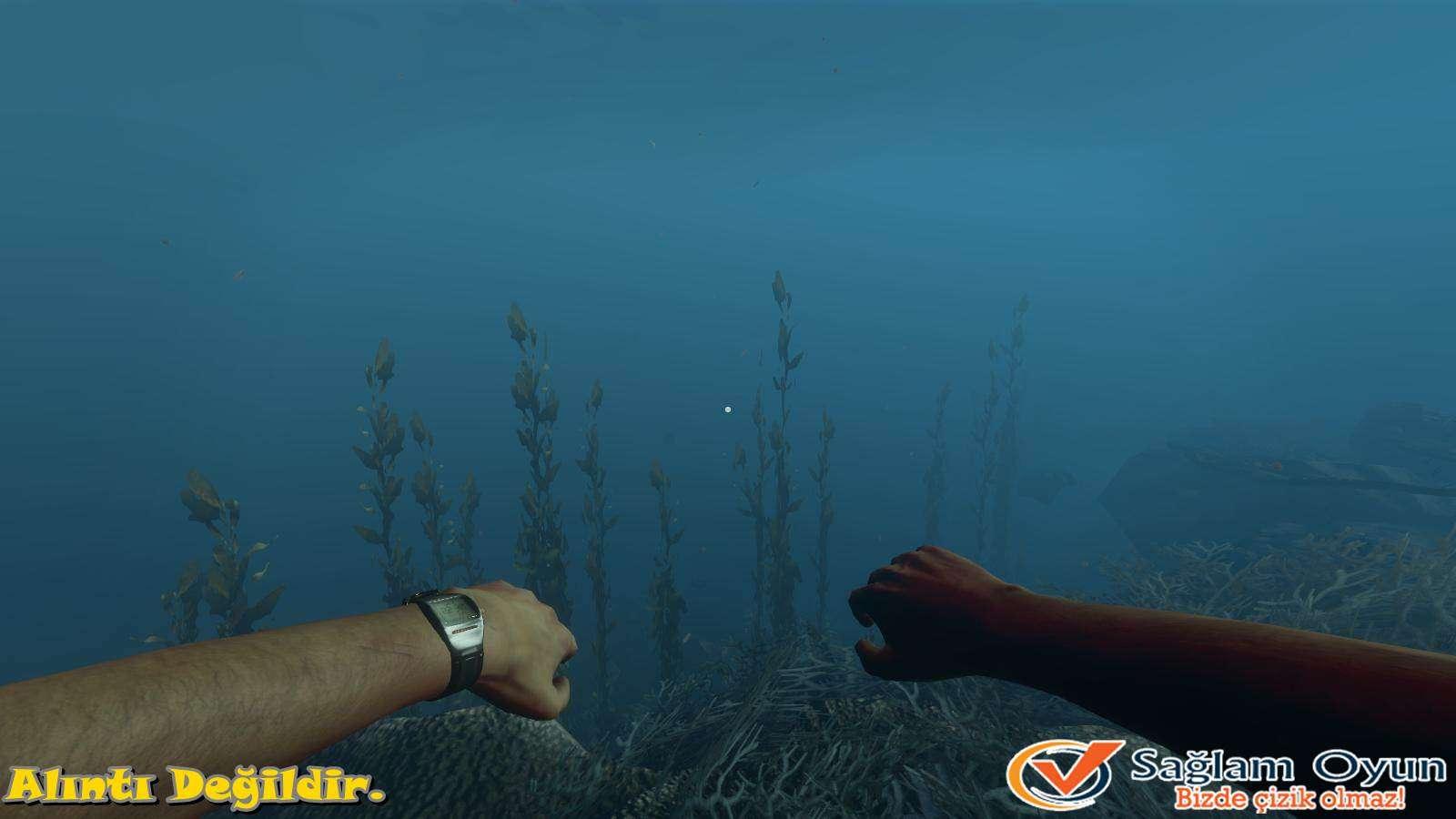 Stranded Deep-4