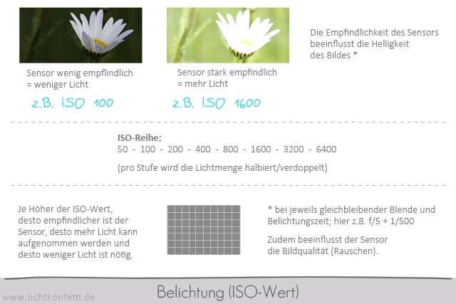 Foto-Kurs - Belichtung - ISO Empfindlichkeit