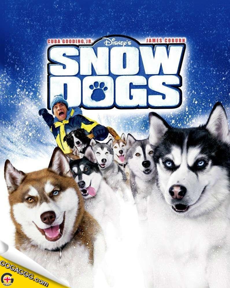 Snow Dogs | თოვლის ძაღლები