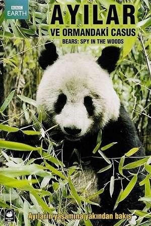 Ayılar ve Ormandaki Casus - Bears: Spy in the Woods - 2004 Türkçe Dublaj DVDRip indir