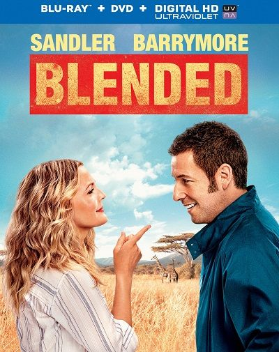 Kar���k Aile - Blended - 2014 BluRay 1080p DuaL MKV indir