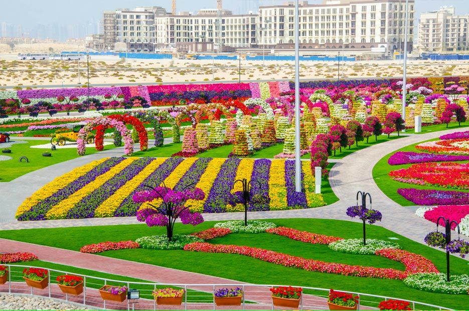 86022200 O maior jardim do Mundo   o jardim de milagre de Dubai