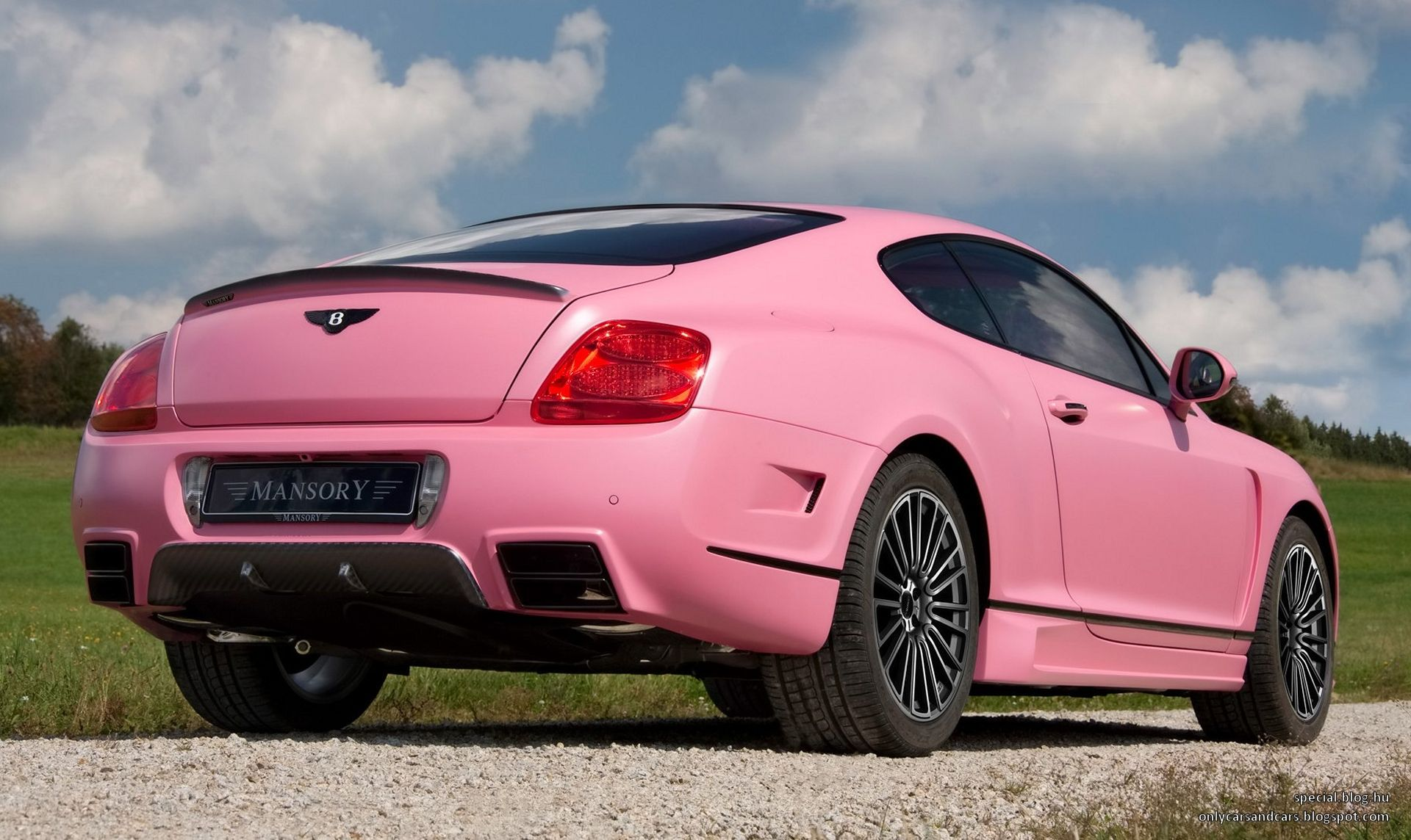 Bentley only cars and cars bentley continental mansory vitesse rose publicscrutiny Choice Image