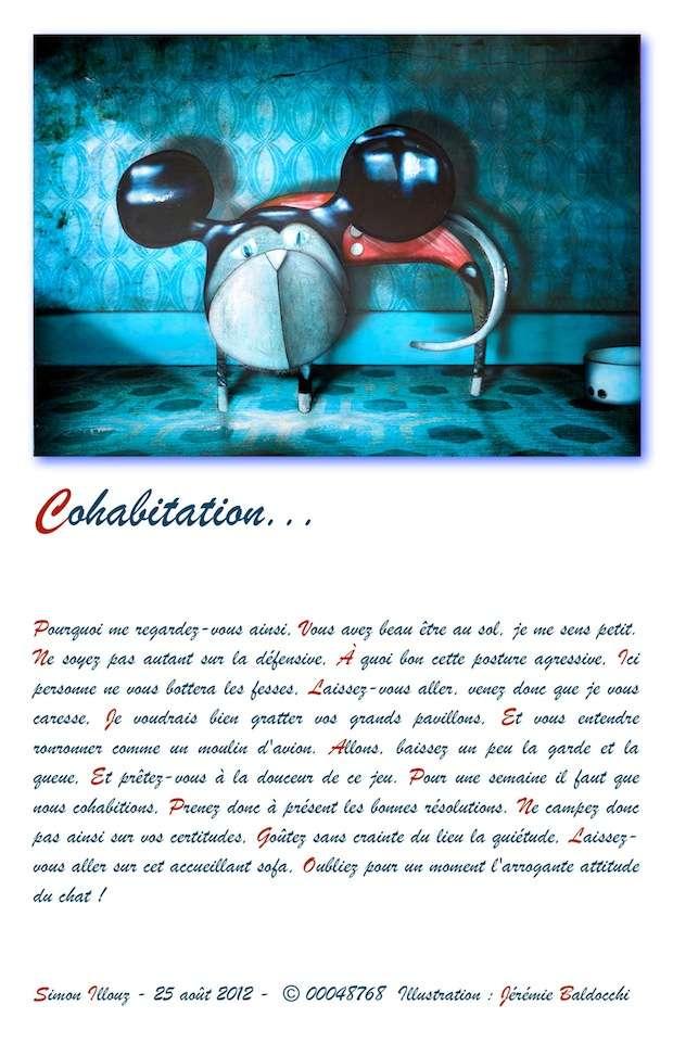 http://imageshack.us/a/img818/3927/cohabitation.jpg