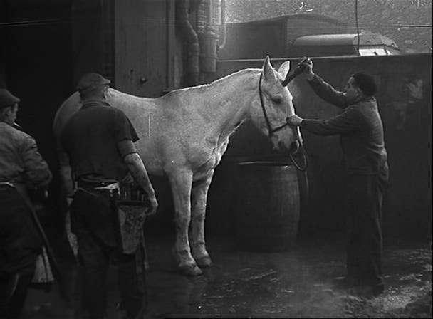 caballok Bernard Queysanne   Un homme qui dort aka The Man Asleep (1974)