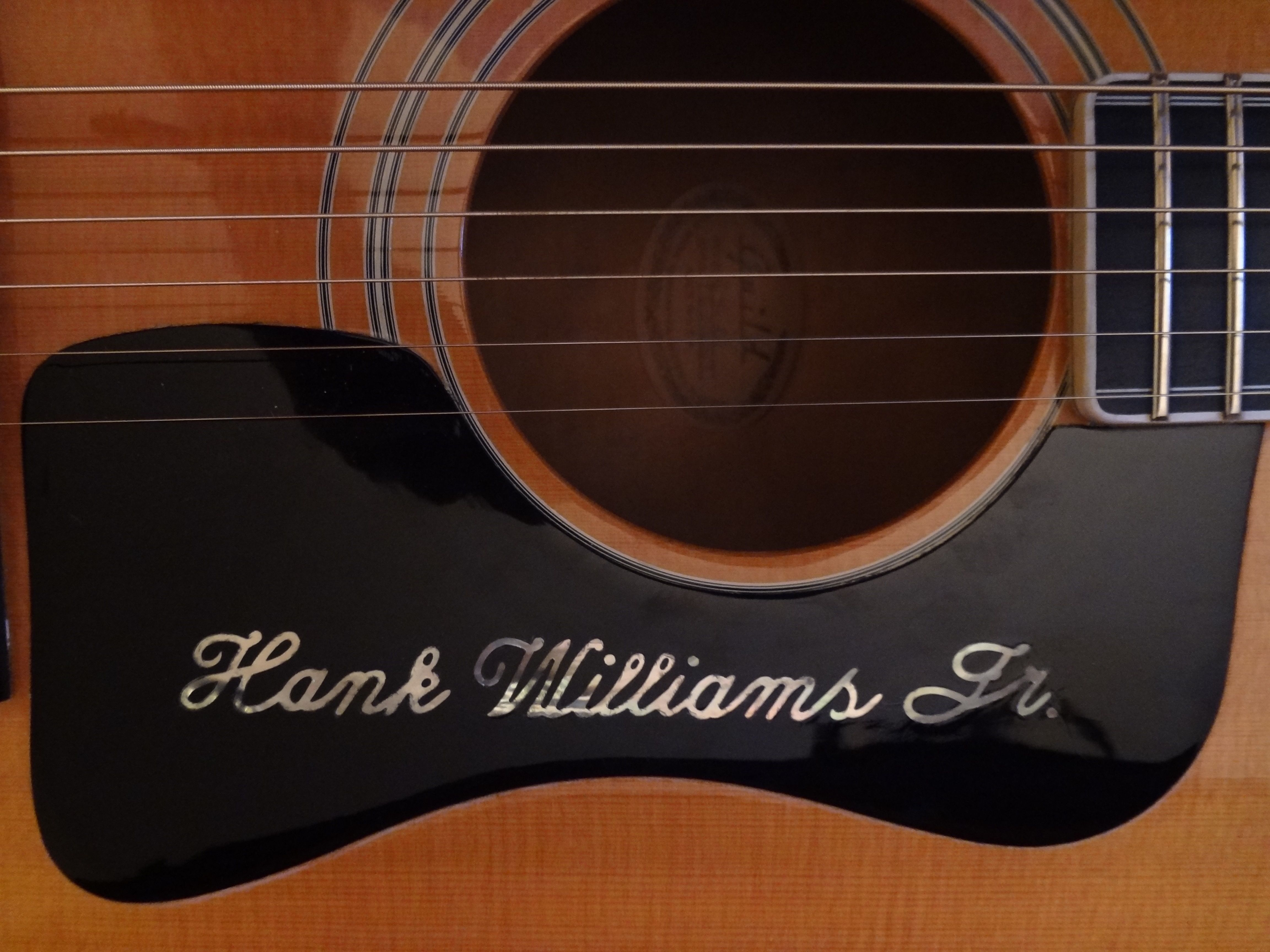 Hank williams jr essays