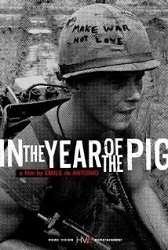 Năm Của Những Con Lợn