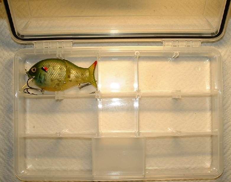 "SILVER FLECK RICK/'S FISH ON 3/""//8cm PADDLE SHAD Soft Plastics ~ WHITE"