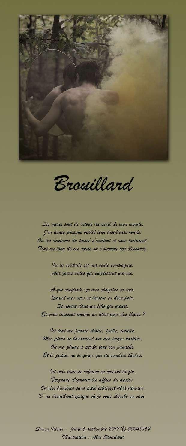 http://imageshack.us/a/img856/3476/brouillard.jpg