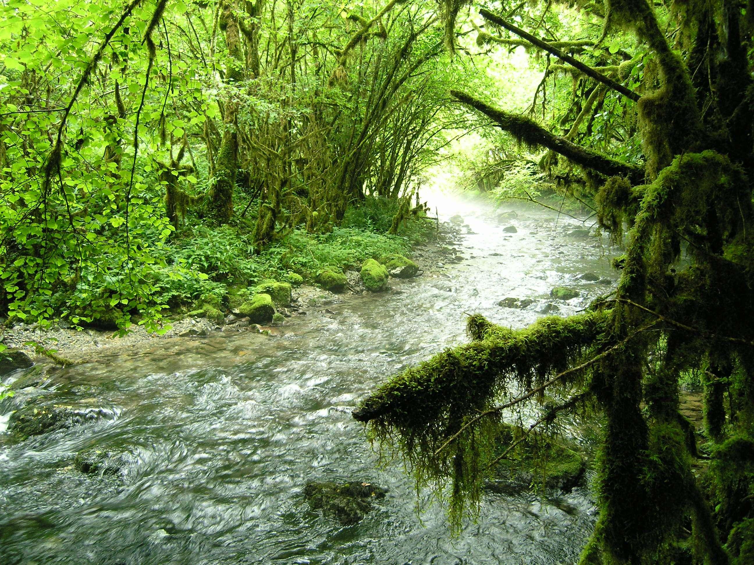 rivière Arros