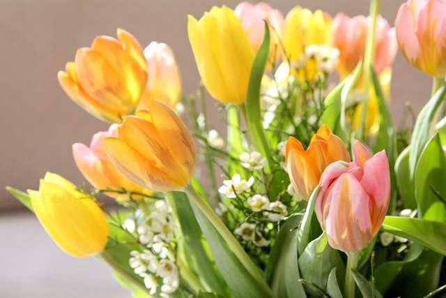 Ostern Blumen